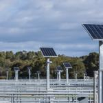 Solar panels at the Eastern Treatment Plant