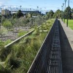 Raingarden in Melbourne with the MCG in the background