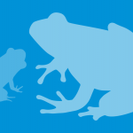Frog silhouettes illustration