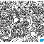 Frogs of Melbourne colouring sheet